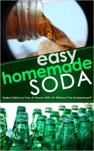 Home Soda Making recipes Books